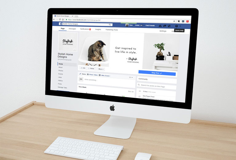 Desarrollo web. Unick. Consultora Branding. Agencia Publicidad. Emprendedores. Startup. News Business. Emprendedores